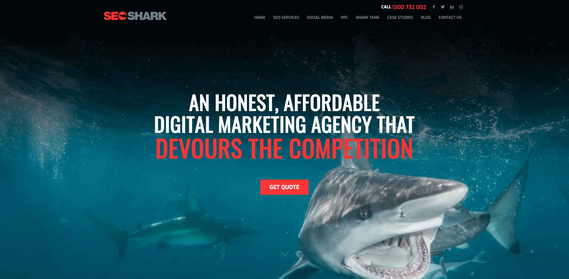 Home page of SEO shark – a Digital Marketing Agency